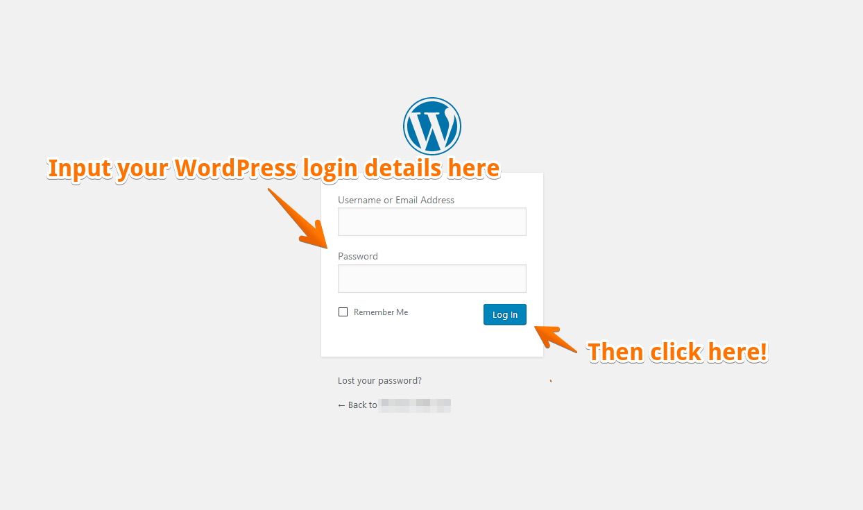 Log in to your WordPress site